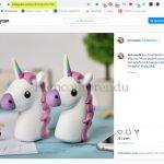 instagram et la Licornaute